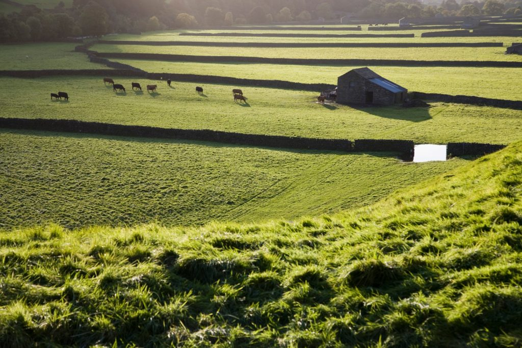 Lush England landscapes hiking creates great opportunities for active vacations