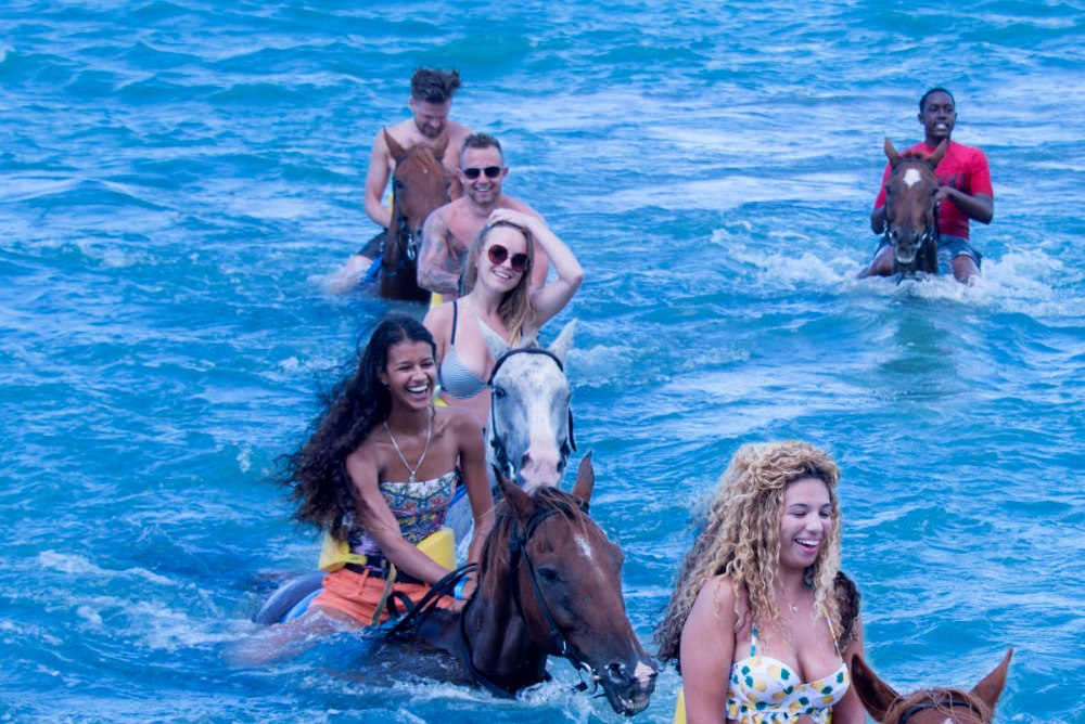 Swim with horses Jamaica