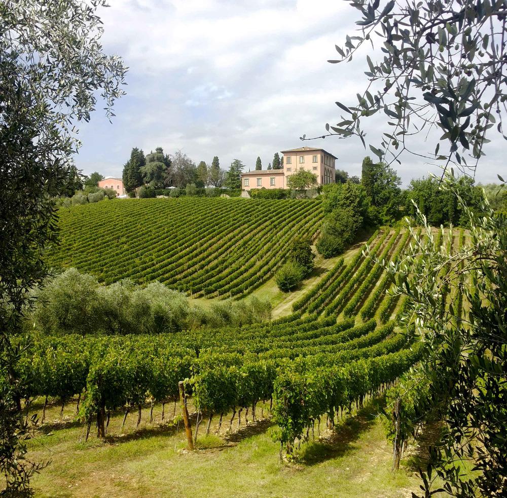 Chianti Region Tuscany